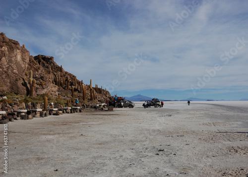 Salar de Uyuni -  Incahuasi, isla del pescado