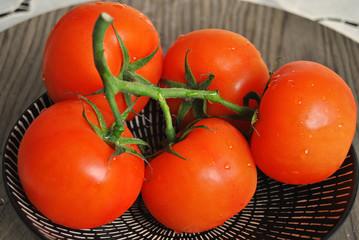 Heerlijke verse tomaten