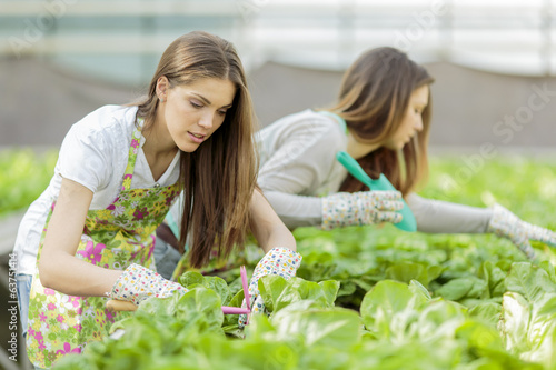 canvas print picture Young women in the garden