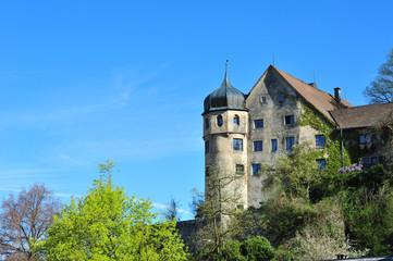 Blick auf Altstadt Bregenz, Mittelalter
