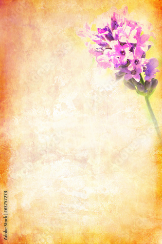 Grungy background with lavender