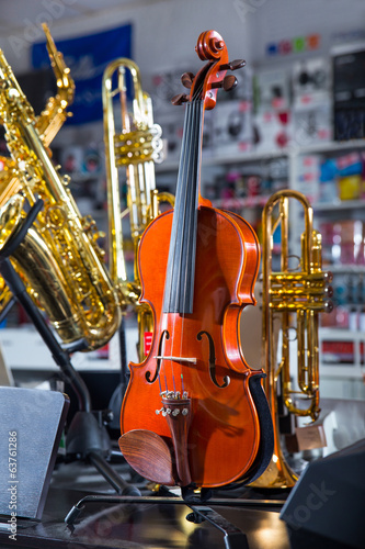 Violin at the music store