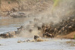 canvas print picture Wildebeest migration, Mara river