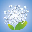 Easter white flower blue background