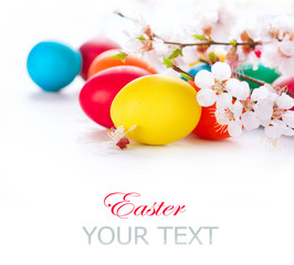 Easter. Colorful easter eggs with spring blossom flowers