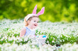 Adorable toddler girl wearing bunny ears in first spring flowers