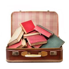 il bagaglio di conoscenza