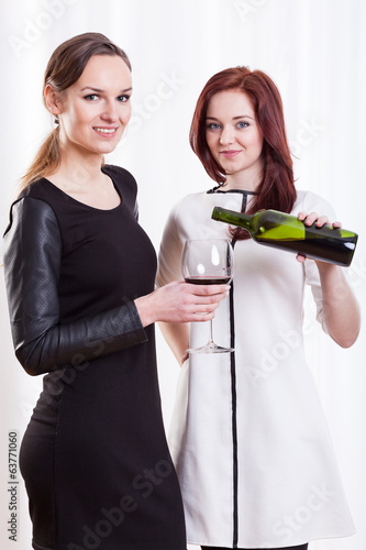 Elegant ladies with wine