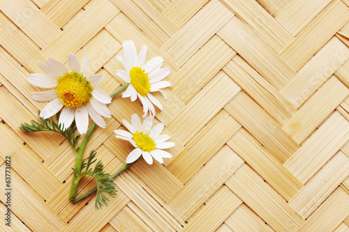 daisies on a wicker board