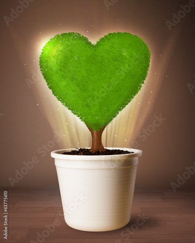 Eco heart tree coming out from flowerpot