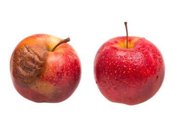 Frischer und verfaulter roter Apfel