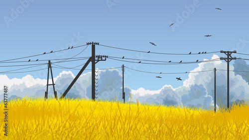 Vector illustration of birds in sky and on power line.