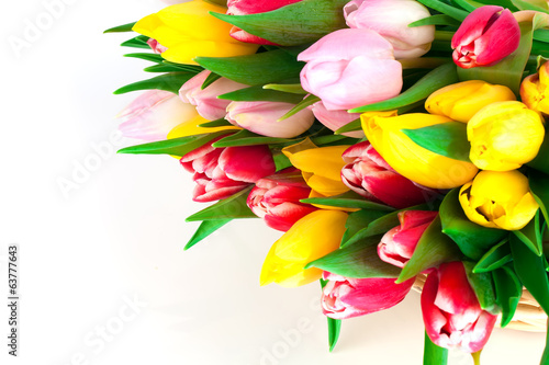 spring tulips on white background. happy mothers day, romantic s