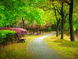 Green city park. Shanghai, China - 63778890
