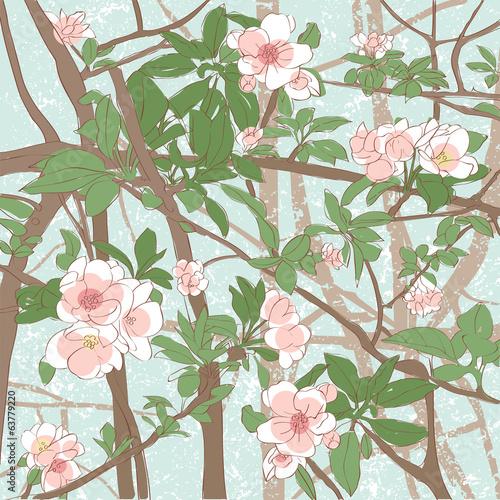 apple flowers background