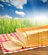 Bread toast