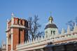 Усадьба Царицыно. Фигурный мост и церковь на заднем плане
