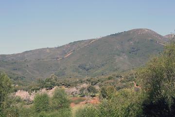 Pico Manaero, Sauceda, Hurdes, España