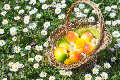 Easter Egg in Basket on a Meadow