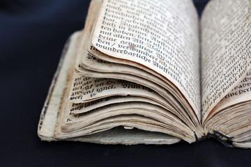 Das Buch aus dem 17. Jahrhundert