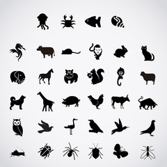 Set of animals