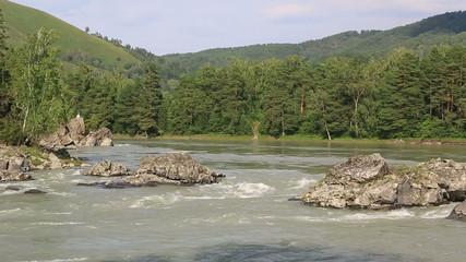 Beautiful summer landscape mountain river Katun. Altai Krai.