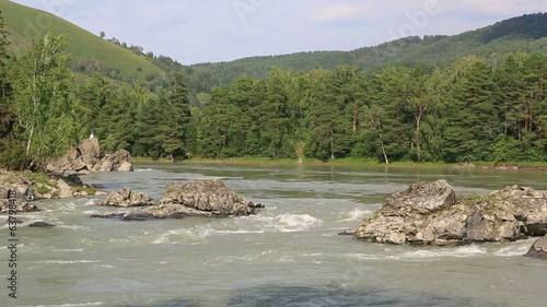 Beautiful summer landscape mountain river Katun. Altai Krai.