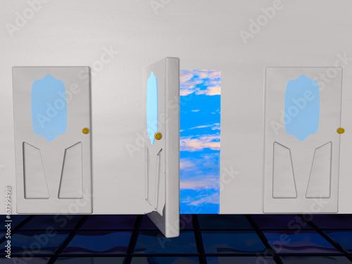 Door for the sky