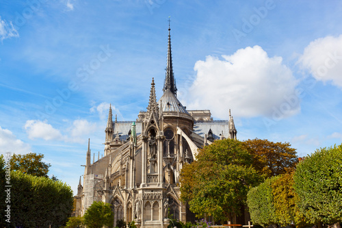 Notre-Dame in sunny autumn day, Paris, France