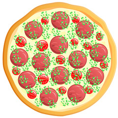 pizza, vector illustration