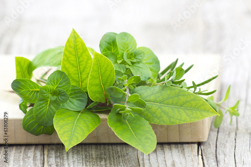 Freshly harvested herbs on wooden background