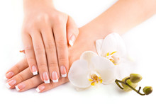 beautiful french manicure with white orchid on white
