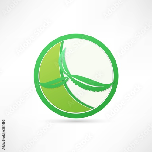 aloe green icon