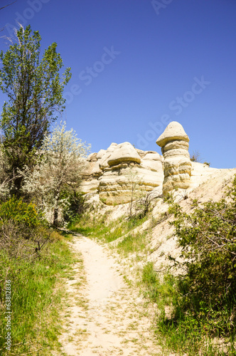 Path leading pass stone formations