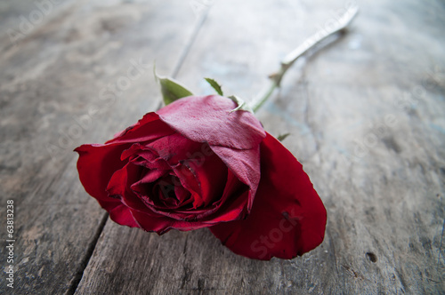 red rose on old wooden background,
