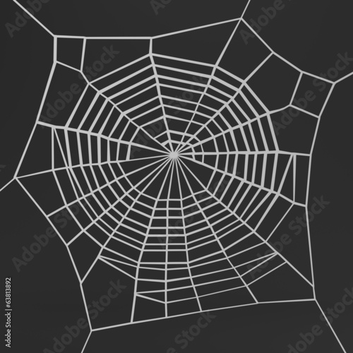 realistic 3d render of spiderweb