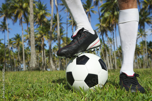 Brazilian Football Player Standing with Soccer Ball Palm Trees