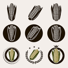 Corn label and icons set. Vector
