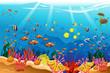 Marine underwater scene