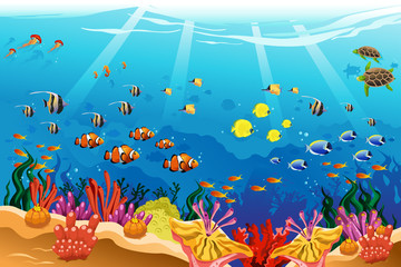 Marine underwater scene © artisticco