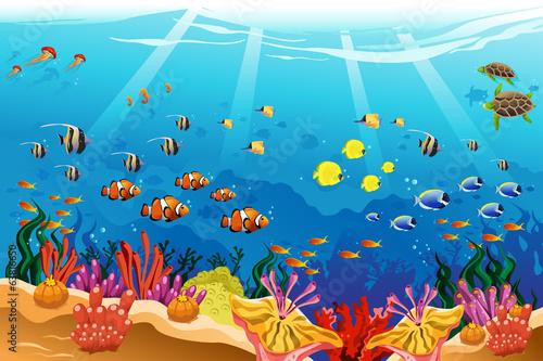 Marine underwater scene - 63816650