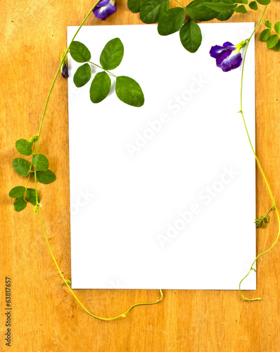paper on wood background with ivy fixing tree. Conservation conc