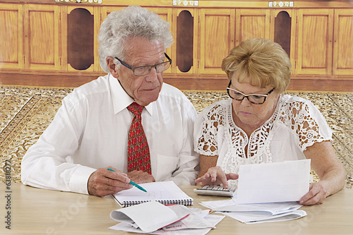 Smart senior couple doing paperwork