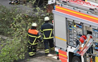 Feuerwehr bei Baumfällung