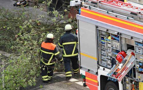canvas print picture Feuerwehr bei Baumfällung