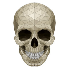 Mosaic skull