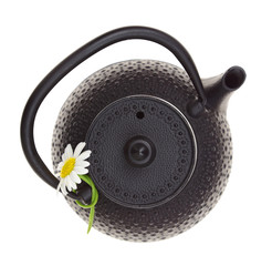 Teapot with chamomile flower isolated on white