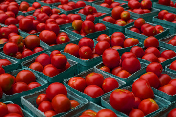 Cartons of Tomatoes