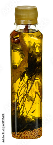 Bottle of vegetable oil with herbal for cooking isolated on