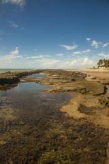 Spiaggia sull'oceano Atlantico, Paraiba Brasile